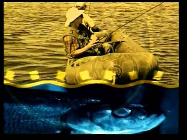 Заставка программы Диалоги о рыбалке (РТР, 13.05.1999 - 29.06.2002; 7ТВ, 12.08.2003 - 08.05.2008)