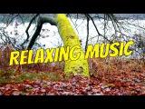 Видео музыки Релаксация - Польский Красота природы