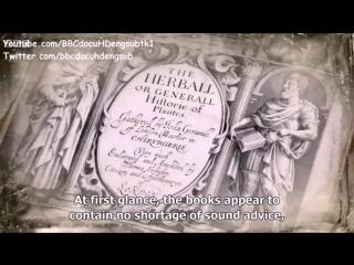 Hidden Killers of the Tudor Home BBC Documentary 2015 with English Subtitles