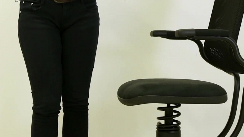 SpinaliS Canada - Ergonomic Series Chair