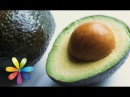 Как вырастить авокадо дома - Все буде добре - Выпуск 476 - 09.10.2014 - Все будет хорошо