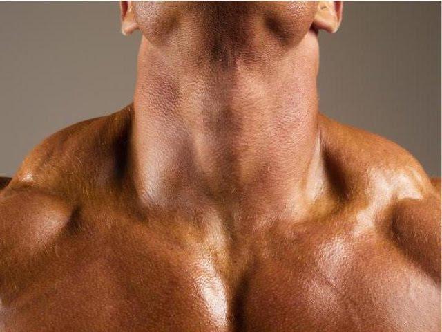 Мышцы шеи (глубокий слой). Подзатылочные мышцы.