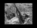 12/24 A história da Segunda Guerra Mundial - De El Alamein a Stalingrado
