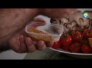 Бремя обеда Настоящий тель авивский хумус