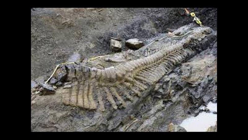 Найден скелет 18 метрового человека. Документальный фильм 29.01.2017