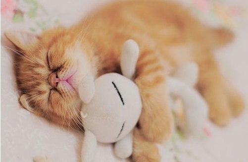 Постоянная слабость и усталость, Чувство постоянной усталости, Постоянная усталость и хочется спать