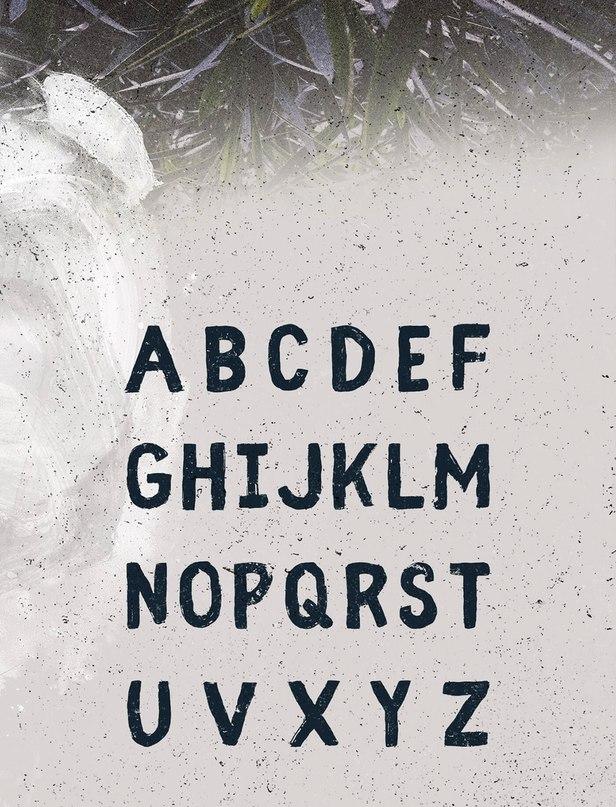 Download Fibre font (typeface)