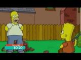 Смпсони у кно  НЛО TV