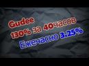 Проект с хорошей репутацией Gudee.30% за 40 часов или 3,25% в час.