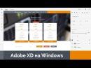 Adobe XD на Windows. Мастер веб-дизайна 6. Создание дизайна сайта хостинг компании