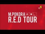 REPLAY - M Pokora, le R.E.D Tour (NT1, 26102016)