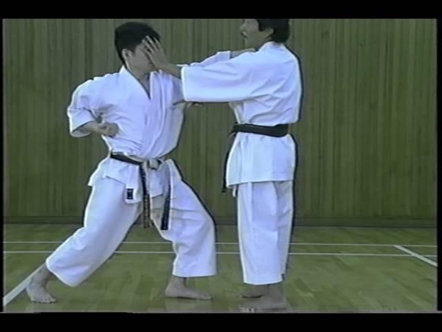 Hoshu Ikeda Tomo 1 Sensei Jesus Costa
