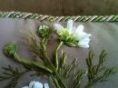 Подушка Часть 2 Вышивка бутонов ромашки