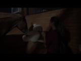 Персиковая Конюшня ~ Медвежья Виселица