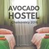 Avocado Hostel | Авокадо Хостел | Чайковский