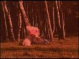 Medveditsa  Mumiy Troll