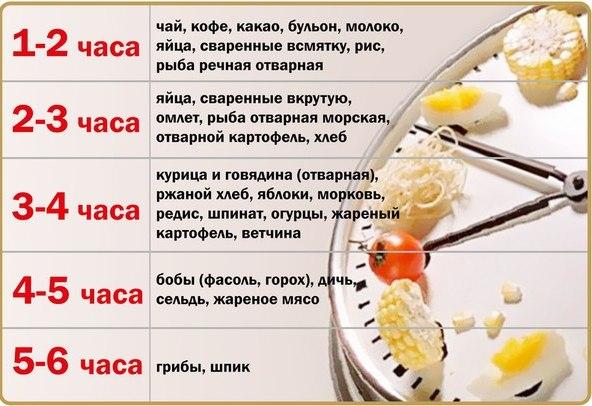 Как сделать чтобы пища быстрее переваривалась