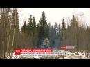 Головну новорічну ялинку України вже везуть до Києва