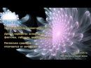 Происхождение человеческих душ Другие варианты фантомы гибриды инкуб