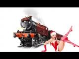 ЛИС и ЛАПЛАНДИЯ - Самый медленный поезд (ЛАПЛАНДИЯ - 2)