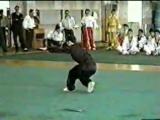 Wushu   Kung fu   Eagle Claw