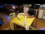 Крюк Мауи из мульта