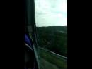 Отдых в Дивноморское