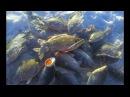 КРУПНЫЙ КАРАСЬ ЗИМОЙ! Здоровенные лапти на мормышку. Зимняя рыбалка на карася