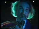 Holger Czukay Cool In The Pool