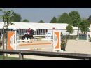 Jumbo Sonja CSI jumping. BWP, 2009year, 178cm - for sale