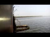 Видео с парома Global Vipassai Pagoda