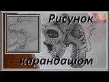 Рисунок карандашом. Рисунок черепа и волка. 1 часть!