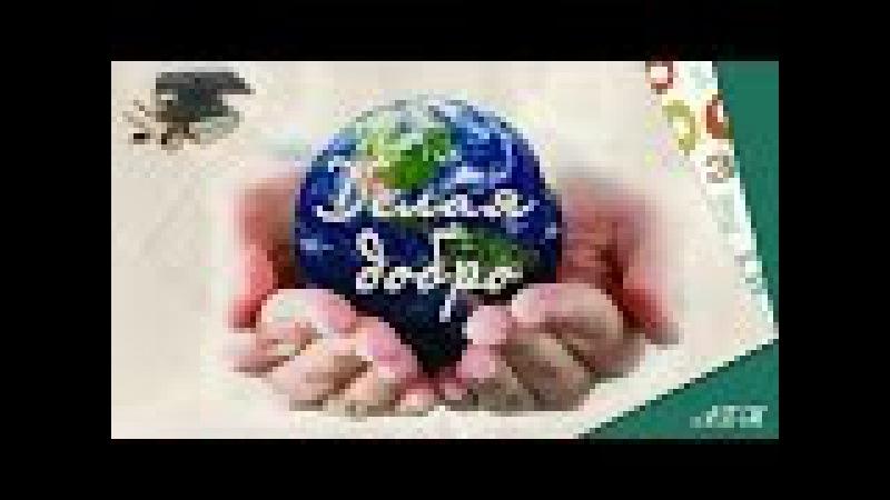 📚 Человек славен добрыми делами 🎓 Обществознание 6 класс