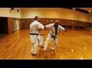 Training full contact kumite Uechi Ryu with Gustavo Sampaio (Brazil) 5 dan Uechi Ryu Karate do