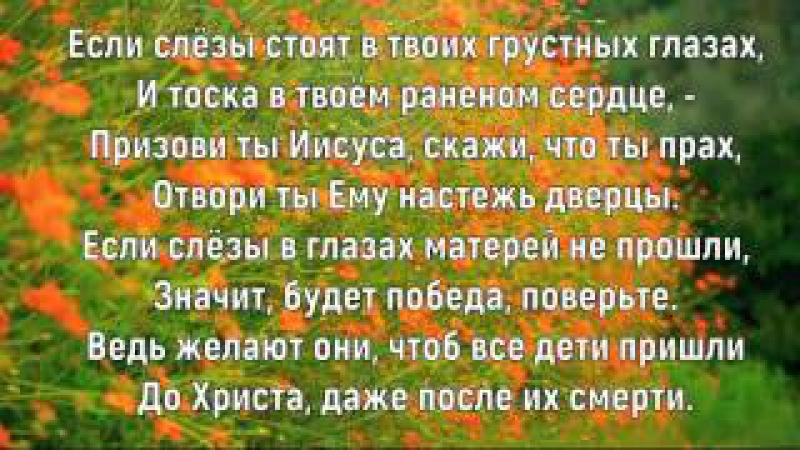 Слёзы. Елена Ваймер