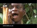 Yelli - Baka women yodellers