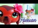 Littlest Pet Shop Popular Episode 11 Месть не Всегда Сладка RUS Русская озвучка