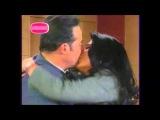 Поцелуй  любви (Виктория   Руффо   и   Сезар  Эвора)