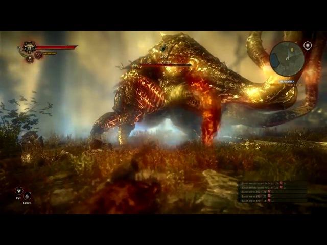 The Witcher 2 Killing the Kayran