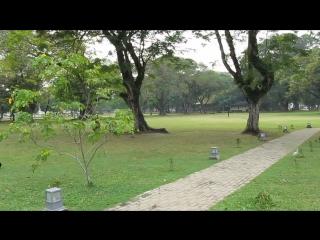 Парк в Коломбо
