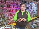 Как выбрать луковицу гладиолуса, георгина, лилии Дача ТВ