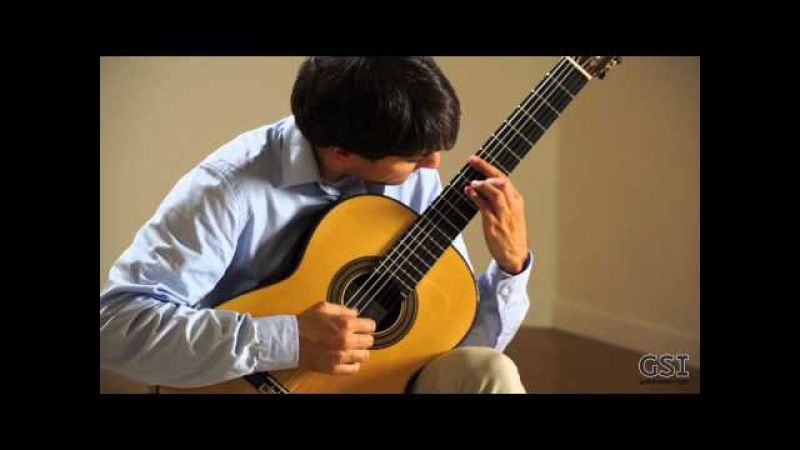Barrios 'Vals Op. 8, No 3' played by Andras Csaki