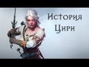 Книжная История Цири   Ведьмак Лор/Lore