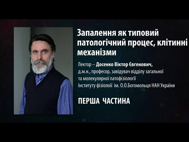 Запалення клітинні механізми Віктор Досенко 1