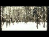Павел Кашин - Русская песня