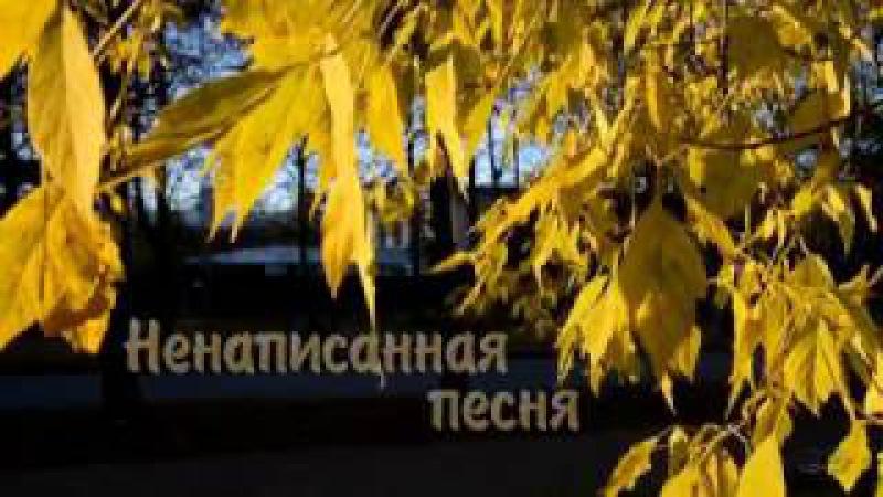 Ненаписанная песня.. автор и исполнитель Иван Вдовин.