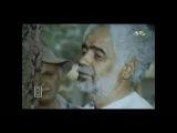Qoca palıdın nağılı 1984 Azerbaycan filmi izle