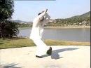 猿功拳十二趟实打 羊撞金剪 鸡形扑手 哪吒倒蹬风火轮 Yuan Gong Quan Shi er Tang Shi Da Yang Zhuang Jin jian Ji Xing