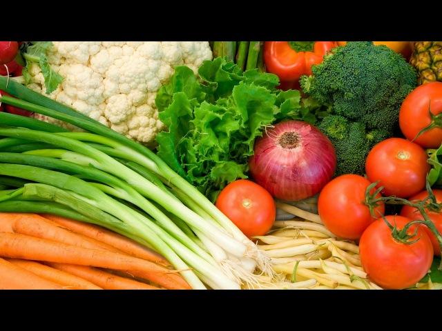 Растительные продукты питания. Полезные овощи. Полезные фрукты. Полезные ягоды. Лечебные растения