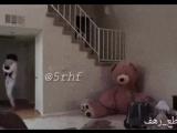 Медведь- шалун